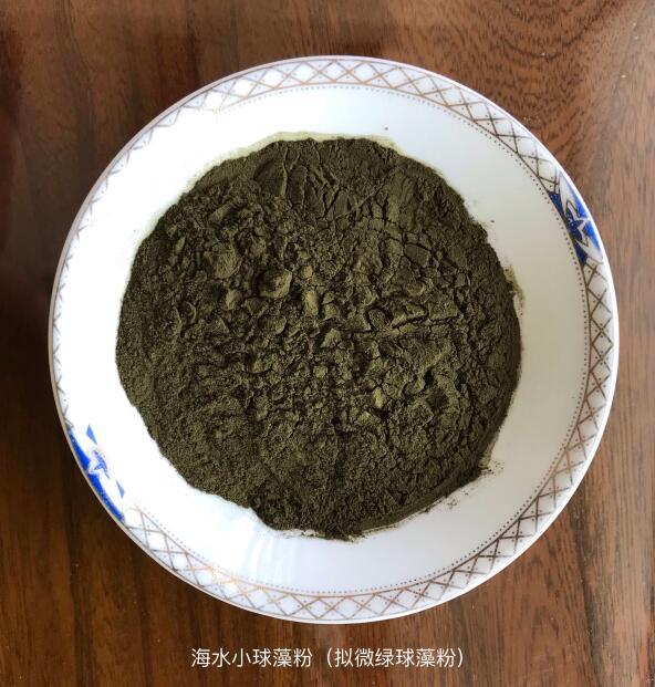 海水小球藻粉